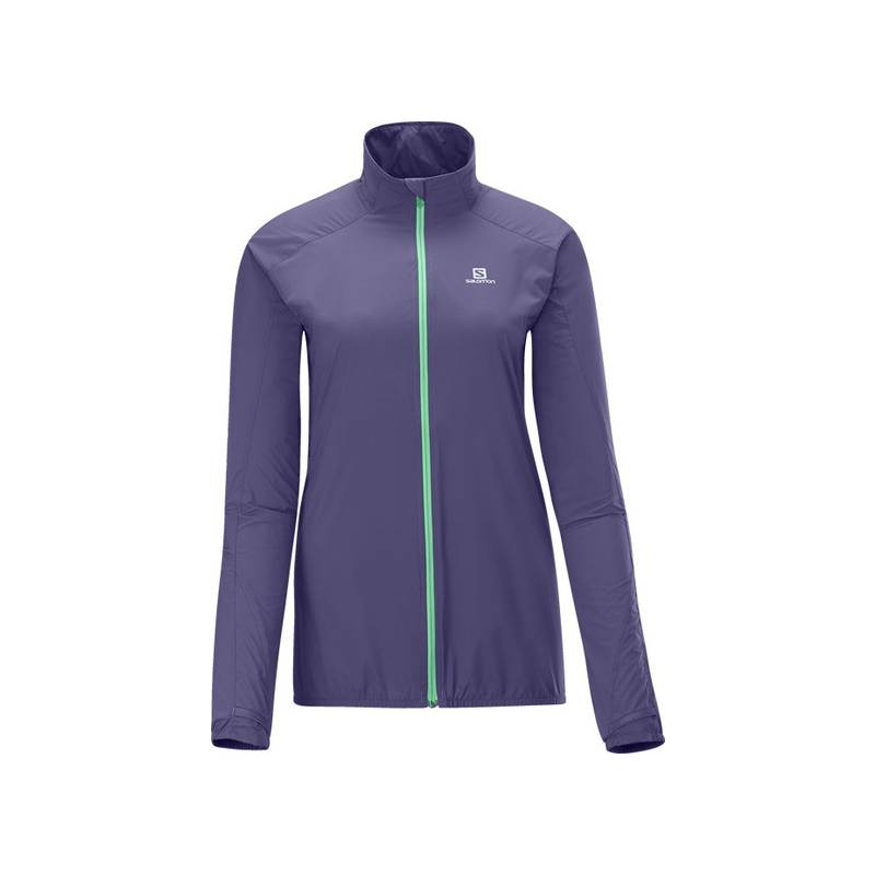 Salomon FAST WING JACKET W ARTIST GREY-X