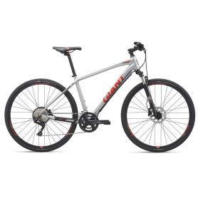 Giant Roam 1 Disc S 2019