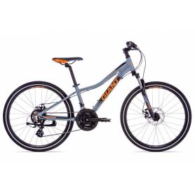 Giant XtC Jr 1 Disc 24 2019